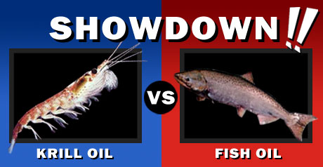 What is the Difference between Krill Oil and Fish Oil? - Current ...